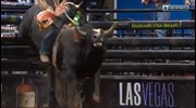 TOP BULL: I'm Legit Too bucks off Mauricio Moreira for 46.25 points