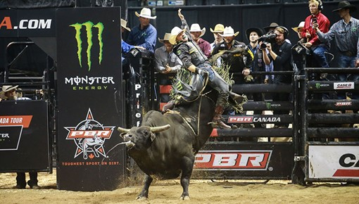 PBR Canada Top 50: Liquid Fire bucks the competition as 2016 Monster Energy Tour bounty bull